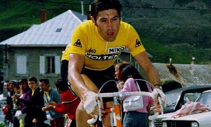 Il cannibale Eddy Merckx