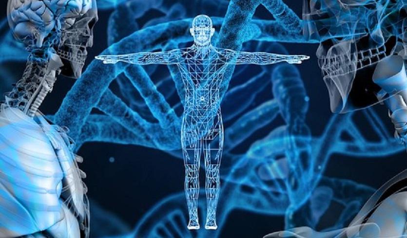 La mappatura del genoma umano – Il brevetto dei corn-flakes – La tragedia di Piermario Morosini