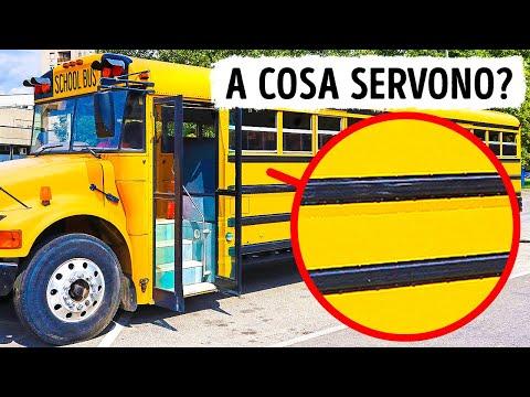 Ecco A Cosa Servono Le Linee Nere Sugli Scuolabus