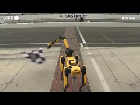 Auto, Usa: 10 monoposto a guida autonoma si sfidano sul circuito di Indianapolis